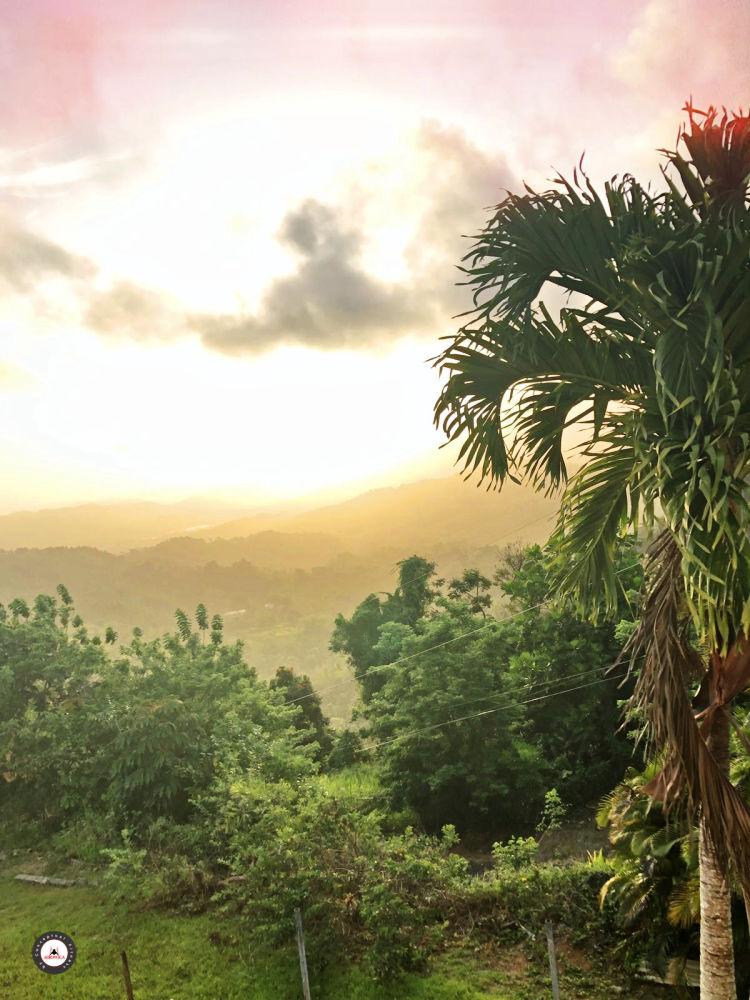 Casa de la Ceiba